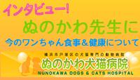 nunokawa