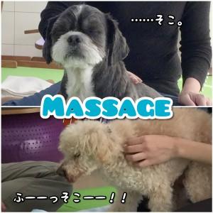Photo Collage_20181201_075010467