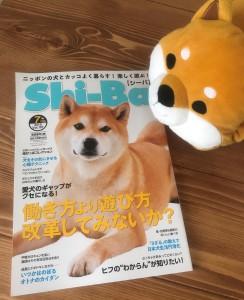 Shi-ba【シーバ】7月号①